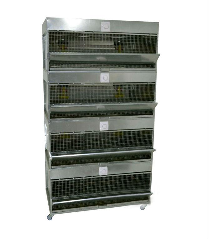 Клетки Профи 1 - Брудер для цыплят Профессионал 95-БР-4 Стандарт.