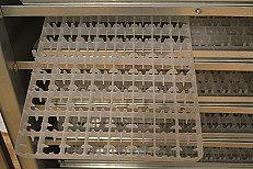 Клетки Профи 4 - Инкубатор АИ -264.