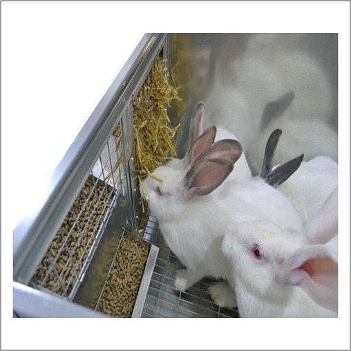 Клетки Профи 2 - Клетка для кроликов с маточным отделением Профессионал 95-КМ-4 Престиж.