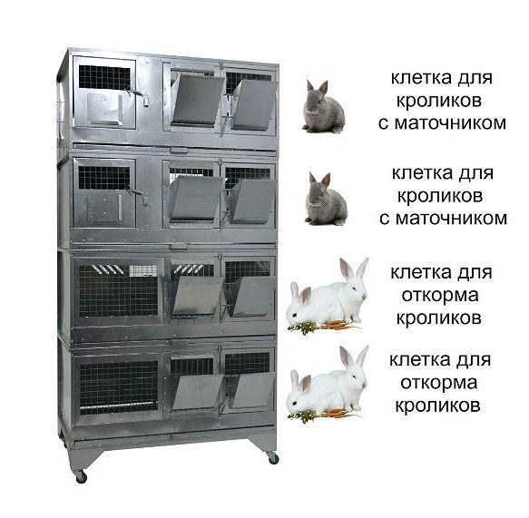 Клетки Профи 1 - Домашняя Ферма №7 Престиж.