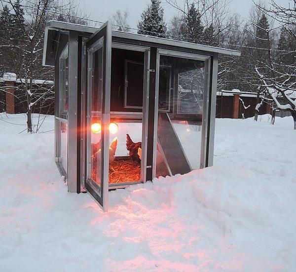 Картинка 2 - Утеплённый домик-курятник с выгулом «Зимняя мечта» на 8-12 кур.