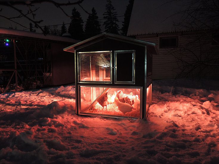 Клетки Профи 4 - Утеплённый домик-курятник с выгулом «Зимняя мечта» на 8-12 кур.